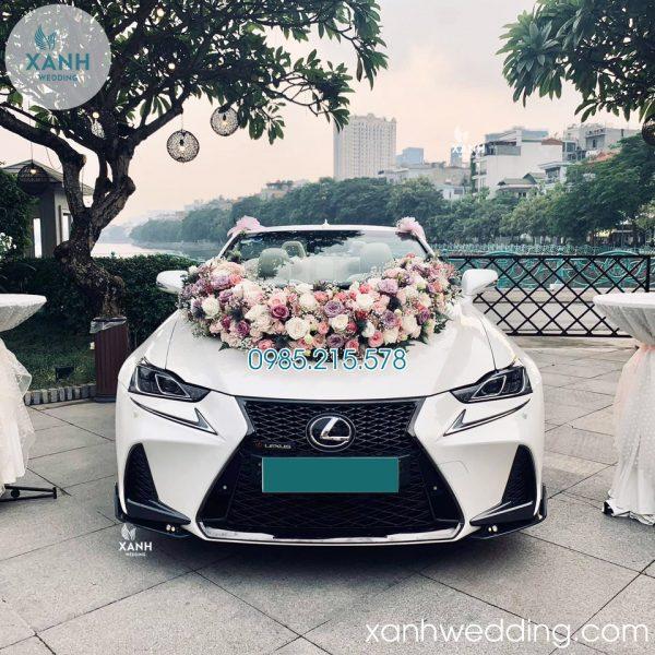 Thuê xe cưới Lexus is250c mui trần trắng